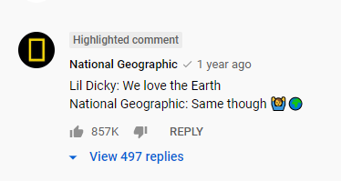 Screenshot of a comment by National Geographic that reads: Lil Dicky: We love the Earth National Geographic: Same though